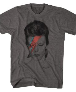 Aladdin Sane David Bowie T-Shirt DB